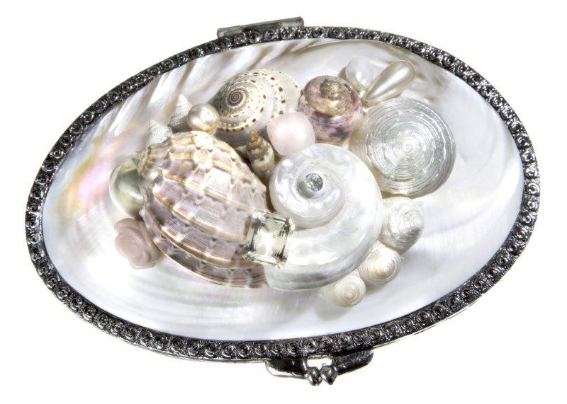 Shell Bag Cipria S Preziosa