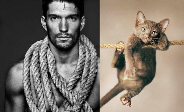 uomo e gatto 14