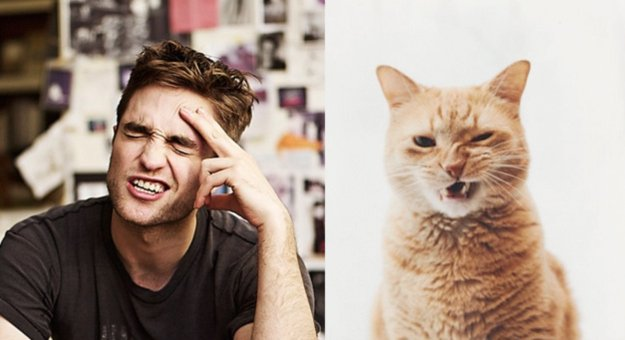 uomo e gatto 15