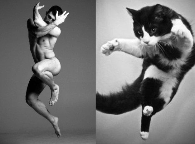 uomo e gatto 17