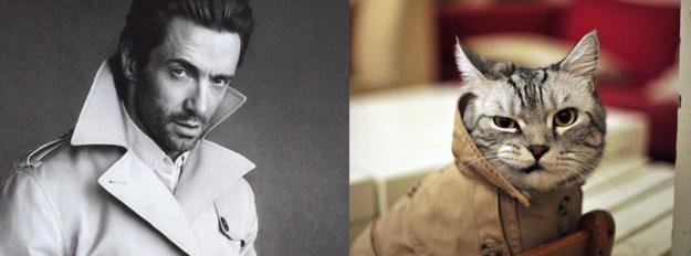 uomo e gatto 21