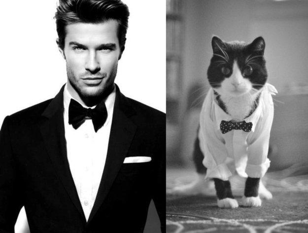 uomo e gatto 6