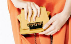 clutch zac by zac posen