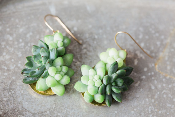 orecchini-piante-grasse