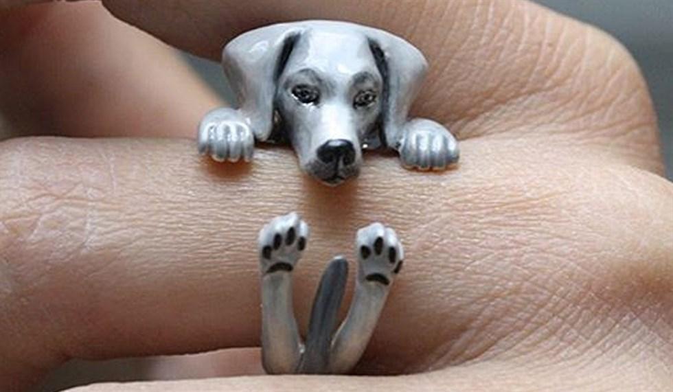 Gli anelli a forma di animale di Mary Lou e non solo, dalle versioni ...
